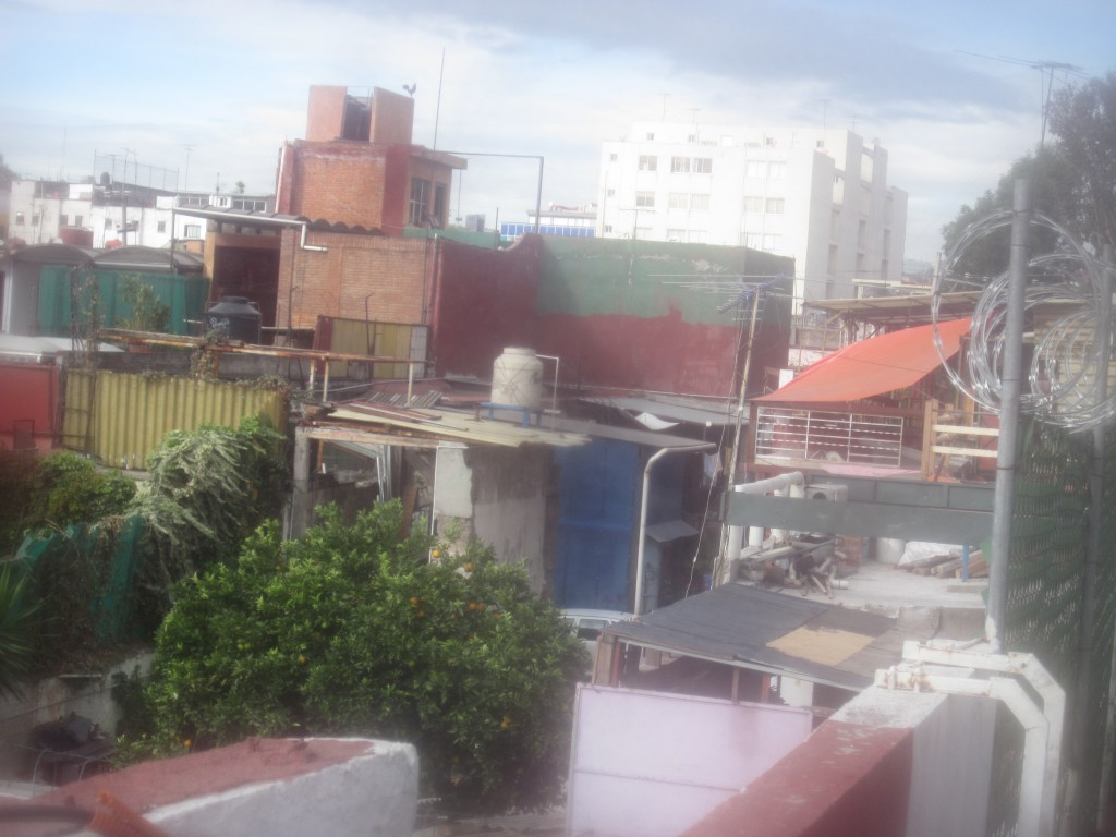 escandon- rooftop view